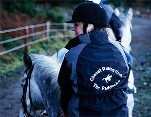 Lessons - Horse Riding Centre Dublin, riding lessons, livery, horses