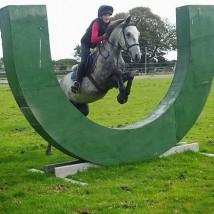 Pony Camp - Horse Riding Centre Dublin, riding lessons, livery